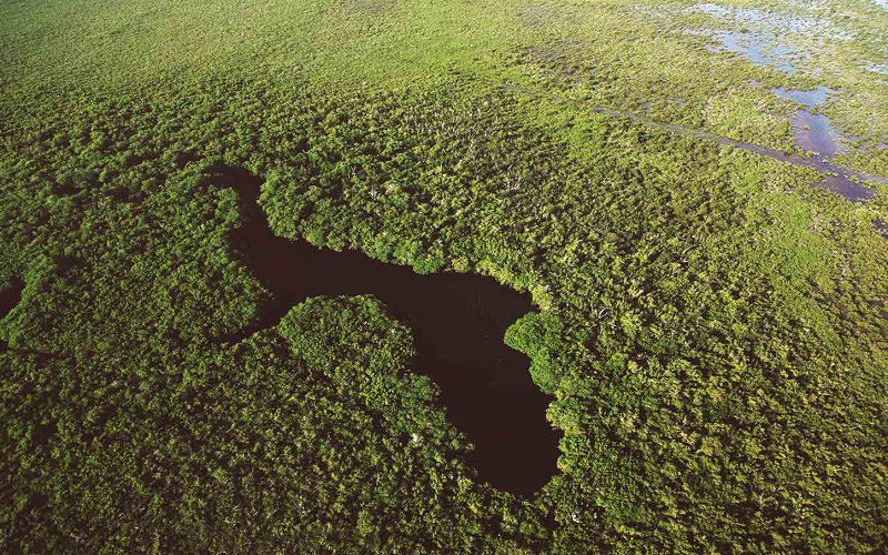 most biosphere reserves